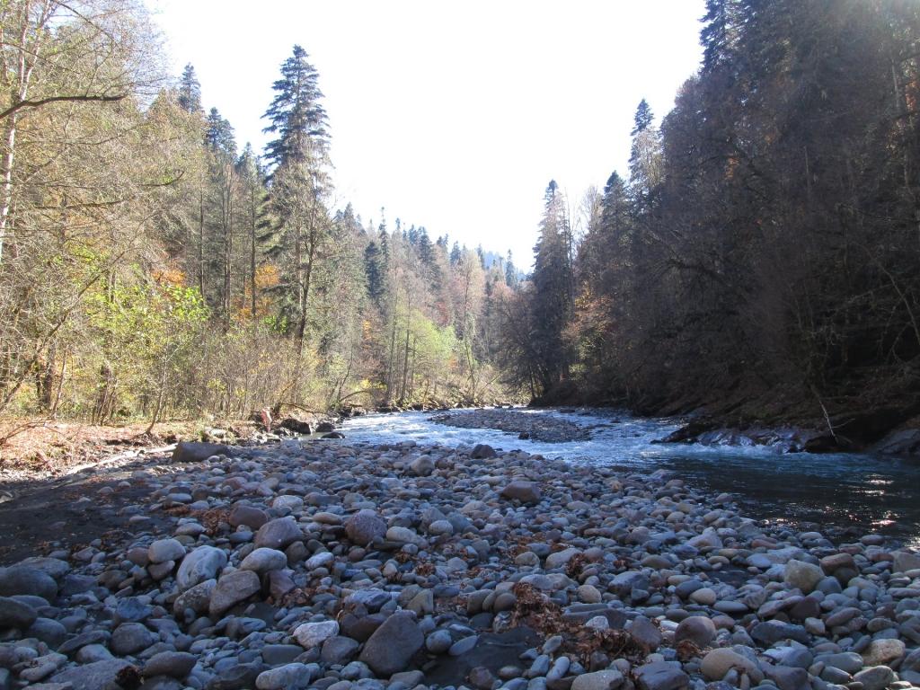 Река Киша рядом с местом впадения в неё реки Шиша.