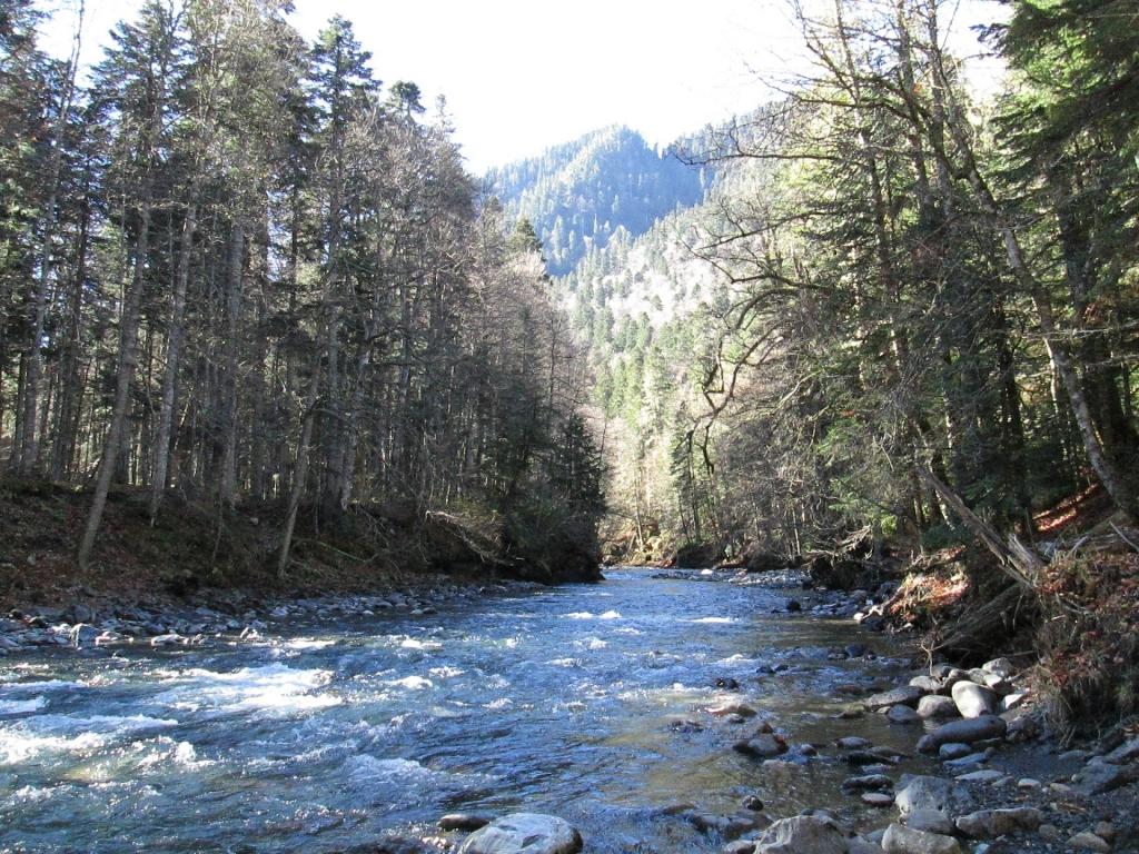 Река Киша с места устья реки Гефо.