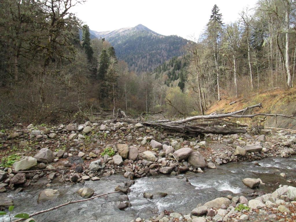 Река Шиша