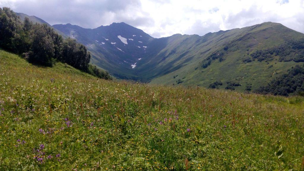 Гора Тыбга