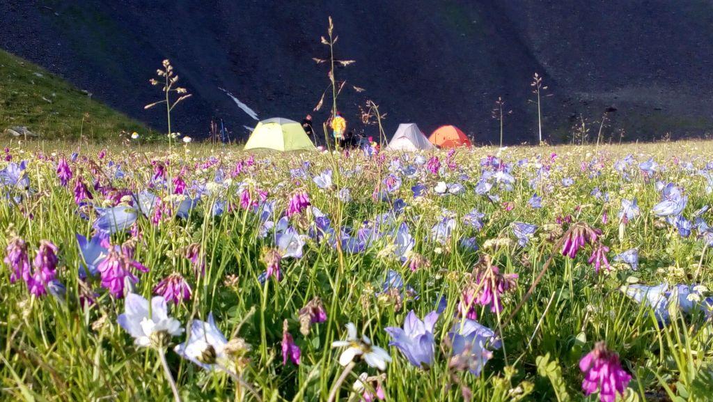 Лагерь у ручья Джемарук