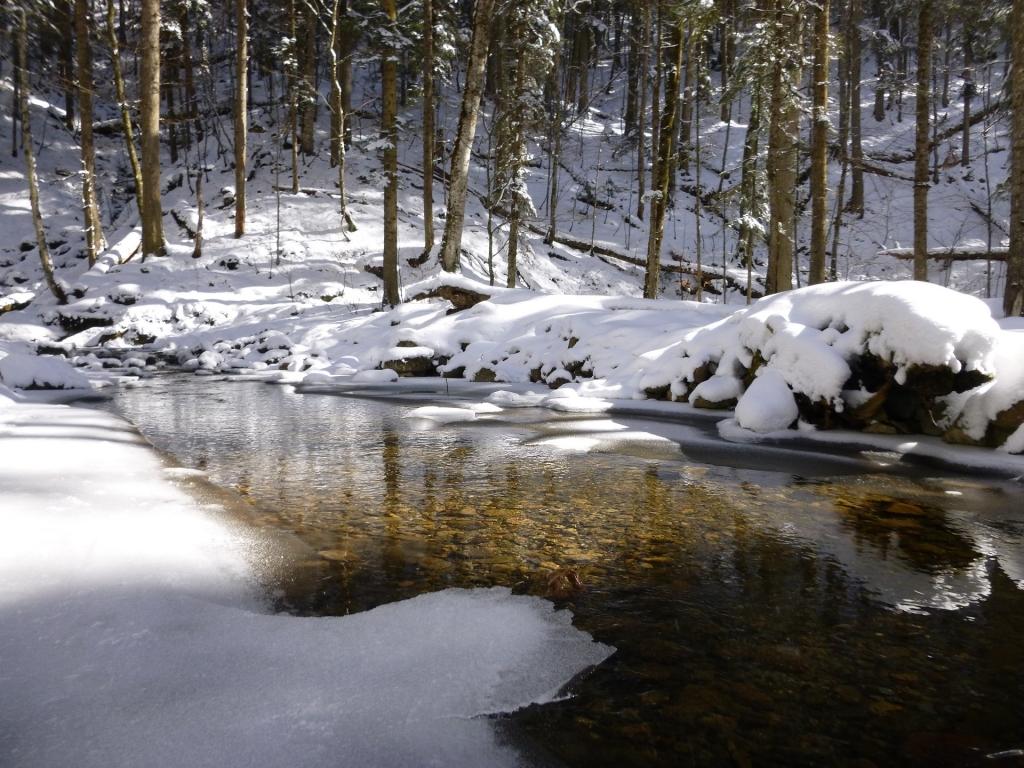 река Афонка