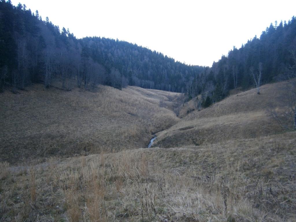 Урочище козлиные поляны