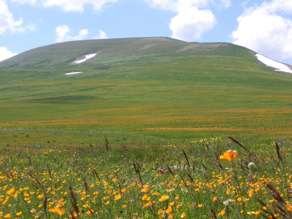 гора Абадзешь